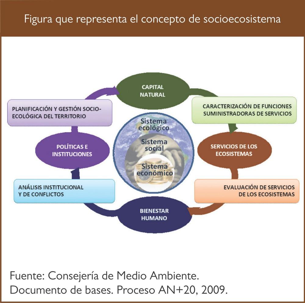 Medio Ambiente en Andalucía. Informe 2009 :: Consejería de Medio