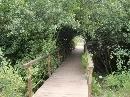 Jardín Botánico 'Dunas del Odiel': Ribera