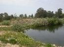 Jardín Botánico 'Dunas del Odiel': Laguna (vista parcial)