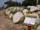 Jardín Botánico 'Dunas del Odiel': Acantilados litorales
