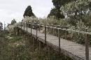 Jardín Botánico 'Dunas del Odiel': Pasarela