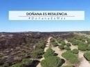 Doñana es resilencia