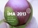 iMA|2013. Informe de Medio Ambiente de Andalucía 2013