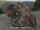 Vídeo Promocional de la propuesta de Parque Nacional de Sierra de las Nieves. Corte II. Peridotita