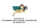 S.O.S Varamientos. Campaña informativa sobre cómo actuar ante un posible varamiento de cetáceos o tortugas marinas en Andalucía