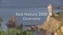 Red Natura 2000 Granada