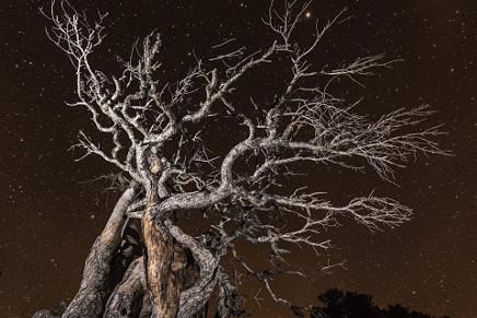 Imagen desde la Sierra de Cazorla Segura y Las Villas. Fotografía: Ramon Portellano?