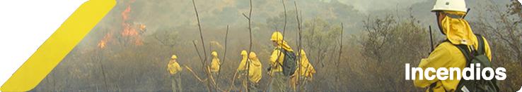 Imagen de portada sección de noticias sobre incendios forestales