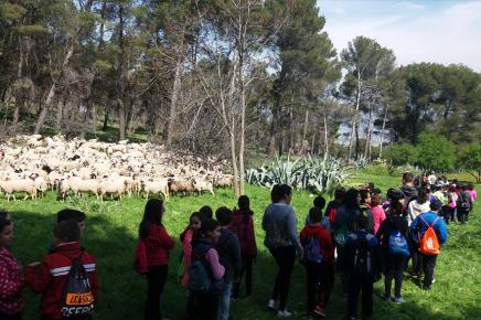Visita de escolares el día mundial forestal