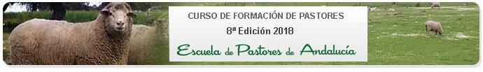 Banner 8ª Edición Escuela de Pastores