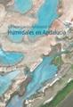 Caracterización Ambiental de Humedales en Andalucía