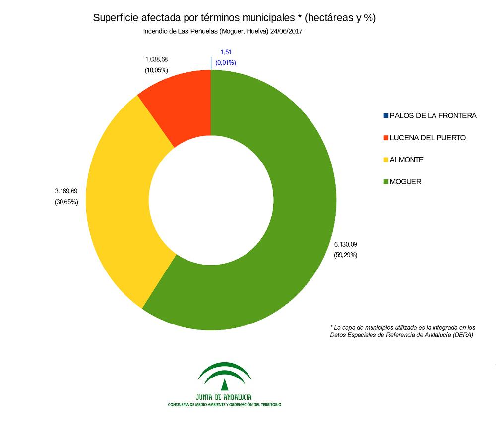 Superficies afectadas por términos municipales - Gráfico