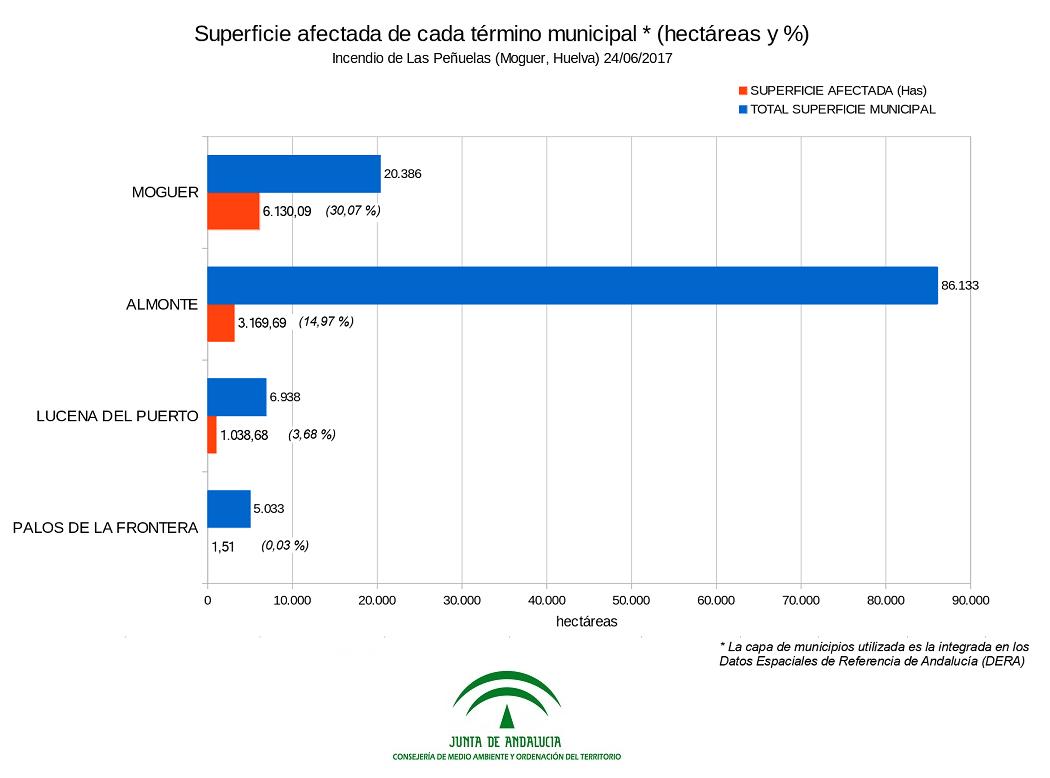 Superficies afectadas en cada término municipal - Gráfico