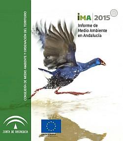 Acceso al IMA 2015