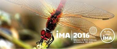 Presentación del IMA 2016