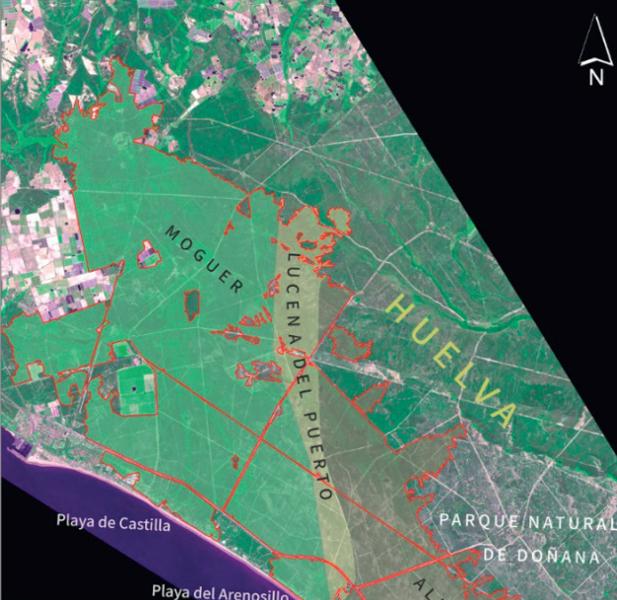 Cartografía de la afección y recuperación vegetal del incendio de Las Peñuelas en Moguer