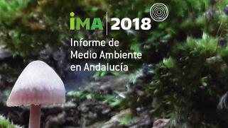 Acceso al Informe de Medio Ambiente en Andalucía 2018
