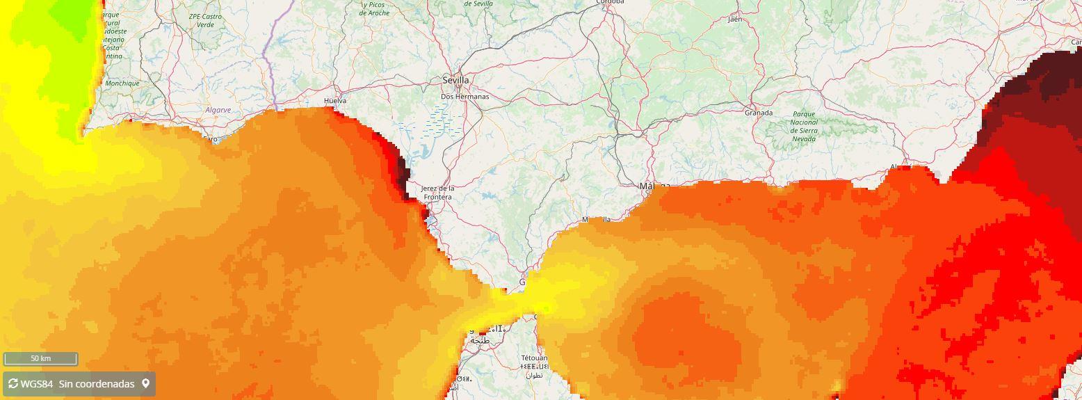 Temperatura superficial del mar. Media estacional verano 2018