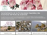 Acceso a la aplicación Caracterización de las Formaciones Vegetales y las Coberturas del Suelo de Andalucía