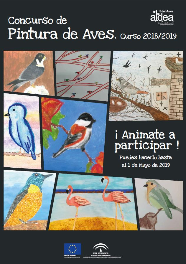 Concurso de pintura de aves 18-19