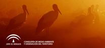 Blog oficial de la Consejería de Medio Ambiente y Ordenación del Territorio