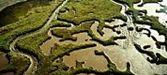 Inclusión de ocho nuevos humedales cordobeses en el Inventario de Humedales de Andalucía