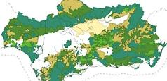 Áreas Estratégicas del Plan Director para la Mejora de la Conectividad Ecológica en Andalucía