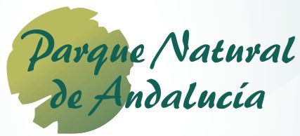 Manual de identidad gráfica de la Marca Parque Natural de Andalucía. Actualización