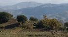 Actualización del Catálogo de Montes Públicos de Andalucía