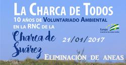 Voluntariado Charca Suárez