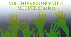 Voluntarios para la recuperación del terreno afectado tras el incendio de Moguer (Huelva)