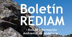 Boletín REDIAM. Marzo 2017