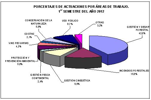 porcentaje de actuaciones por áreas