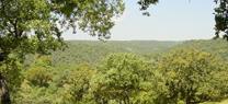 El Parque Natural de Cardeña y Montoro promueve los valores ambientales a través del concurso Bolo de fotografía