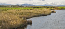 La Junta crea dos nuevos senderos de uso público en las Zonas Húmedas del Sur de Córdoba