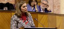 Serrano afirma que la modificación de la LOUA no regularizará las viviendas situadas en zonas inundables y de especial protección