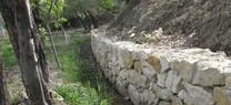 Medio Ambiente restaura una acequia en la Vega de Tubos de Castril para favorecer la conservación de invertebrados amenazados