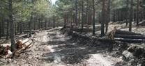 Medio Ambiente promueve la biomasa como combustible en el Centro de Visitantes Torre del Vinagre en la provincia de Jaén