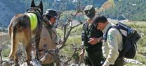 Medio Ambiente organiza unas jornadas técnicas de formación sobre aspectos legales de la lucha contra el veneno en Andalucía