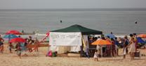 Medio Ambiente pone en marcha el próximo sábado en Doñana la campaña 'Disfruta de la playa sin mariscar. SOS coquinas'