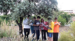 La Junta premia a un IES de Granada y otro de la Línea de la Concepción en el II Certamen 'Crece con tu árbol'