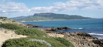 Andalucía desarrollará un proyecto europeo para la conservación de hábitats en el litoral andaluz