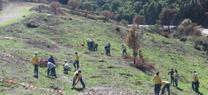 La Junta celebra el Día Mundial de Medio Ambiente con actividades en las ocho provincias andaluzas
