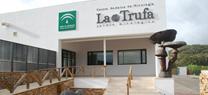Medio Ambiente organiza en Córdoba un curso de formación sobre identificación y microscopia de setas