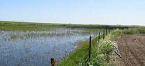 La Junta reinicia las obras para garantizar el abastecimiento de agua a cuatro municipios costeros con gran afluencia turística
