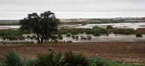 Expertos en humedales debaten cómo restaurar ambientalmente la laguna de Los Tollos para potenciar su biodiversidad