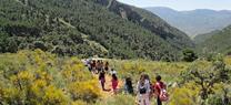 Medio Ambiente oferta una variada muestra de actividades en los espacios protegidos de la comunidad a lo largo de todo el mes