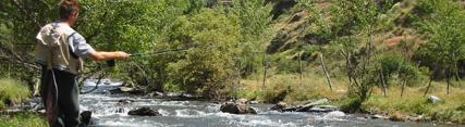 Medio Ambiente publica en BOJA las modificaciones de la Orden General de Veda de la Pesca Continental