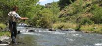 Medio Ambiente publica la nueva Orden General de Veda de la Pesca Continental