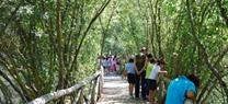 Medio Ambiente oferta una veintena de actividades en diversos espacios protegidos de la comunidad a lo largo de todo el mes